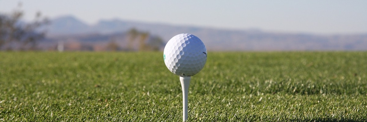 Golfball Tee Golfsyndikat Golfsimulator Skytrak Indoorgolf